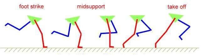 Fase appoggio singolo